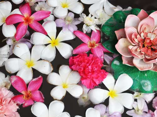 flowers-euroasia-exim